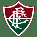 Fluminense icon