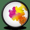 Illustrator CS icon