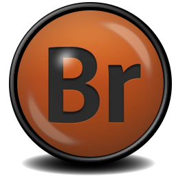 Adobe Bridge CS 4 icon