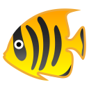 Tropical fish icon