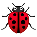 Lady beetle icon