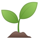 Seedling icon
