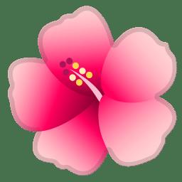 Hibiscus icon