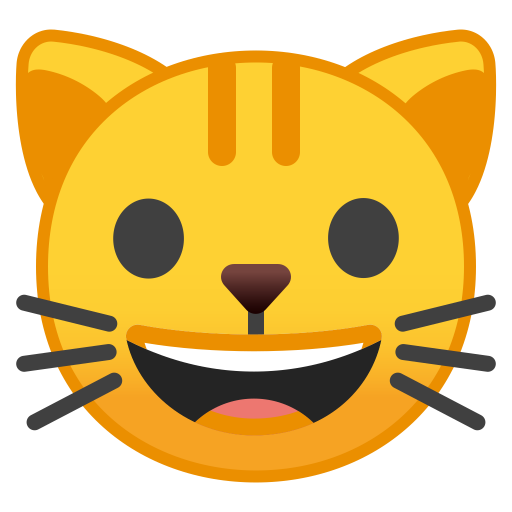 22220-cat-face icon