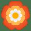 22321-rosette icon