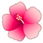 22324-hibiscus icon