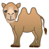 22243-two-hump-camel icon