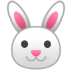 22253-rabbit-face icon