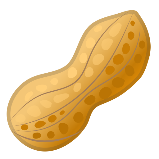 32369-peanuts icon