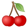 32353-cherries icon
