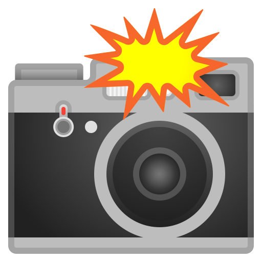 Camera with flash icon
