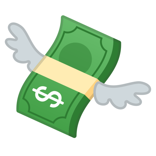 62881-money-with-wings icon