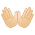 12076-open-hands-light-skin-tone icon