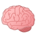 12130-brain icon