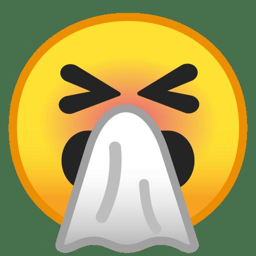 10081-sneezing-face icon