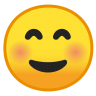 10020-smiling-face icon