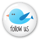 Twitter button follow us icon