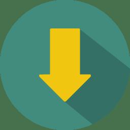 Arrow down 2 icon