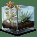 Succulent-Terrarium icon