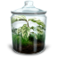 Grassy-Terrarium icon