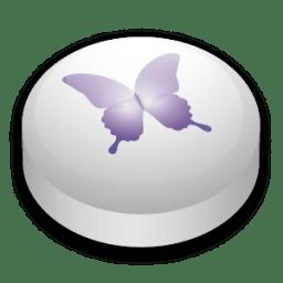 Adobe InDesign CS 2 icon