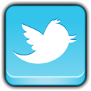 Social Network Twitter icon