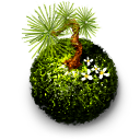 Kokedama moss ball icon