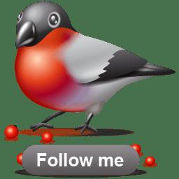 Bullfinch follow icon