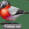 Bullfinch-follow icon