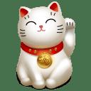 Cat 5 icon
