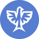 Election Eagle Outline icon