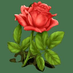 Rose icon