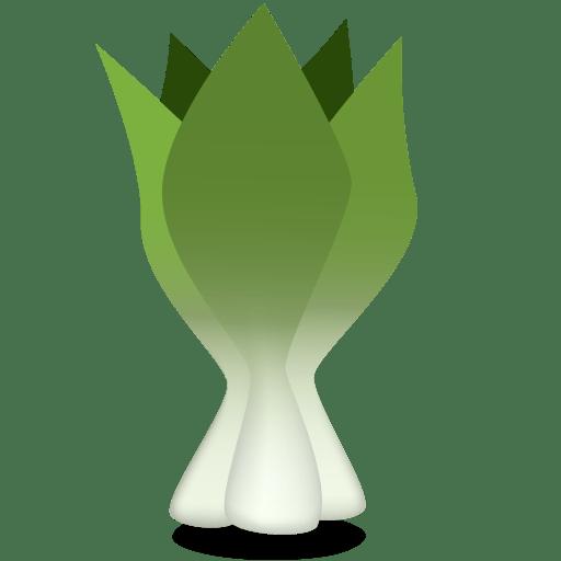 Bok-choy icon