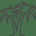 Palms icon