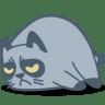 Cat-grumpy icon