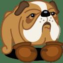 Dog boxer icon