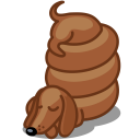 Dog dachshund icon