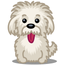 Dog einstein icon
