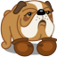 Dog boxer icon