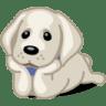 Dog-labrador icon