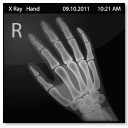 Documents X Ray Hand icon