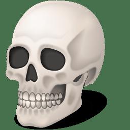 Body Skull icon