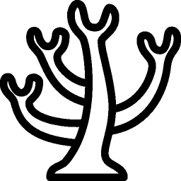 Animals Coral icon