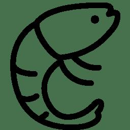 Animals Shrimp icon