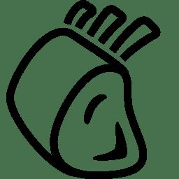 Food Lamb Rack icon