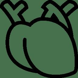 Healthcare Medical Heart icon
