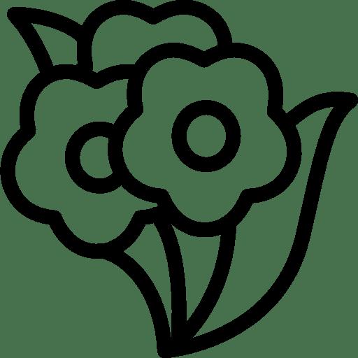 Cinema Bunch Flowers icon