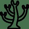 Animals-Coral icon