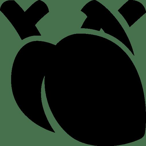 Healthcare-Medical-Heart icon