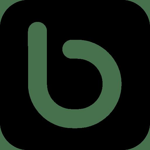 Social-Networks-Bebo icon